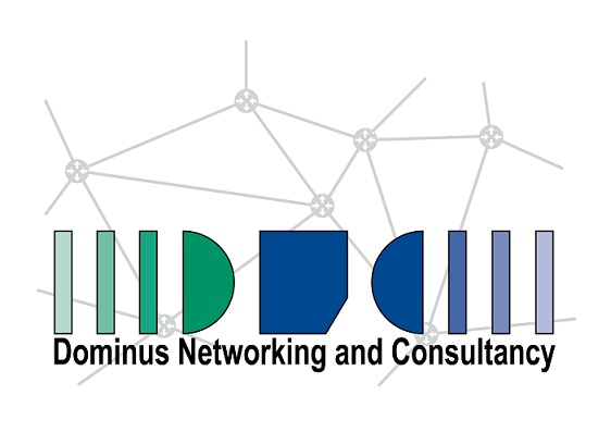 Dominus Networking & Consultancy